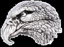 Hebilla de Cinturón Cabeza de Aguila