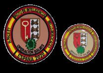 Pack Pin y Parche Operación Balmis 2020 Rgto de Inteligencia