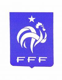 Parche Termoadhesivo Fed francesa Fut 8x6cm
